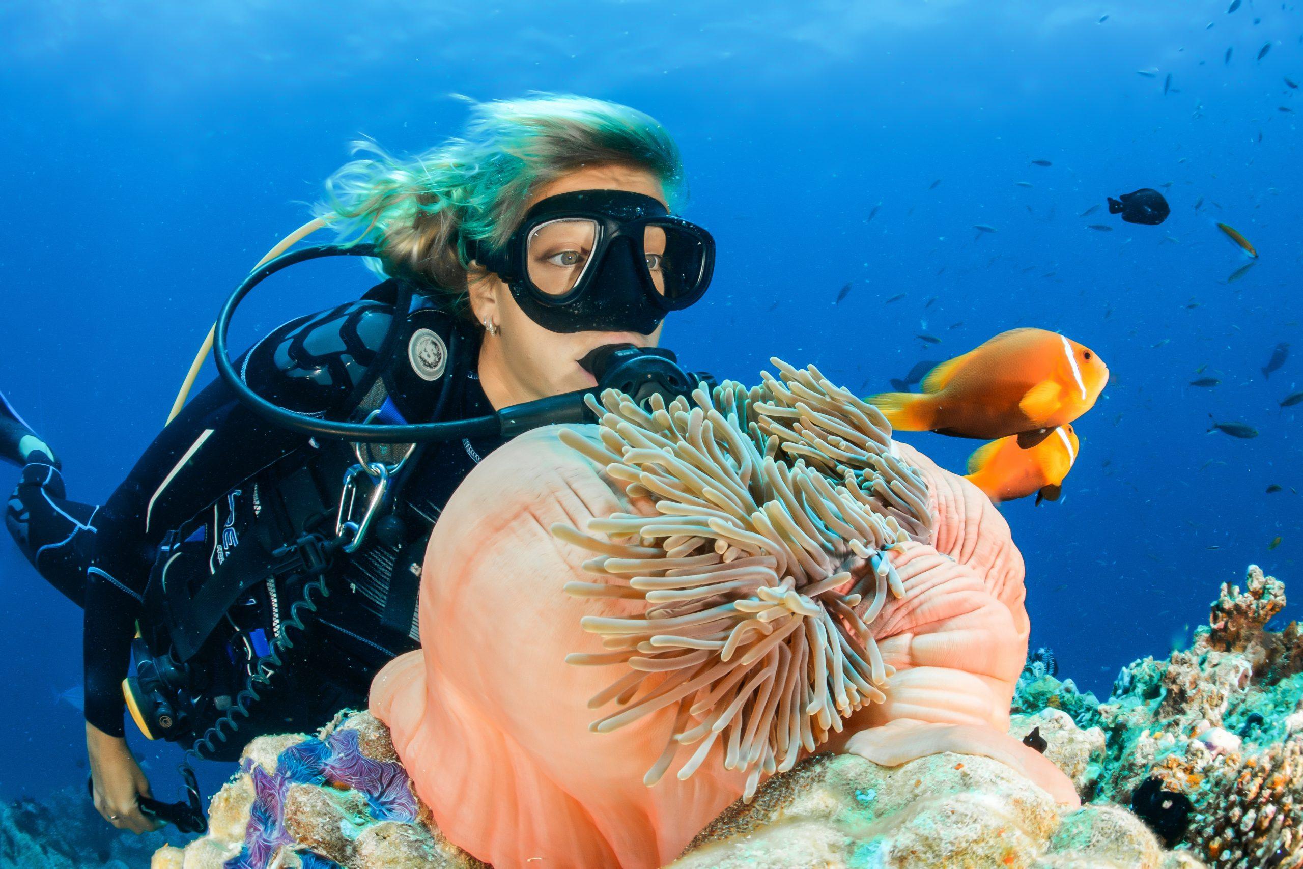 Plongez avec PADI, l'organisation leader de formation de plongeurs dans le monde