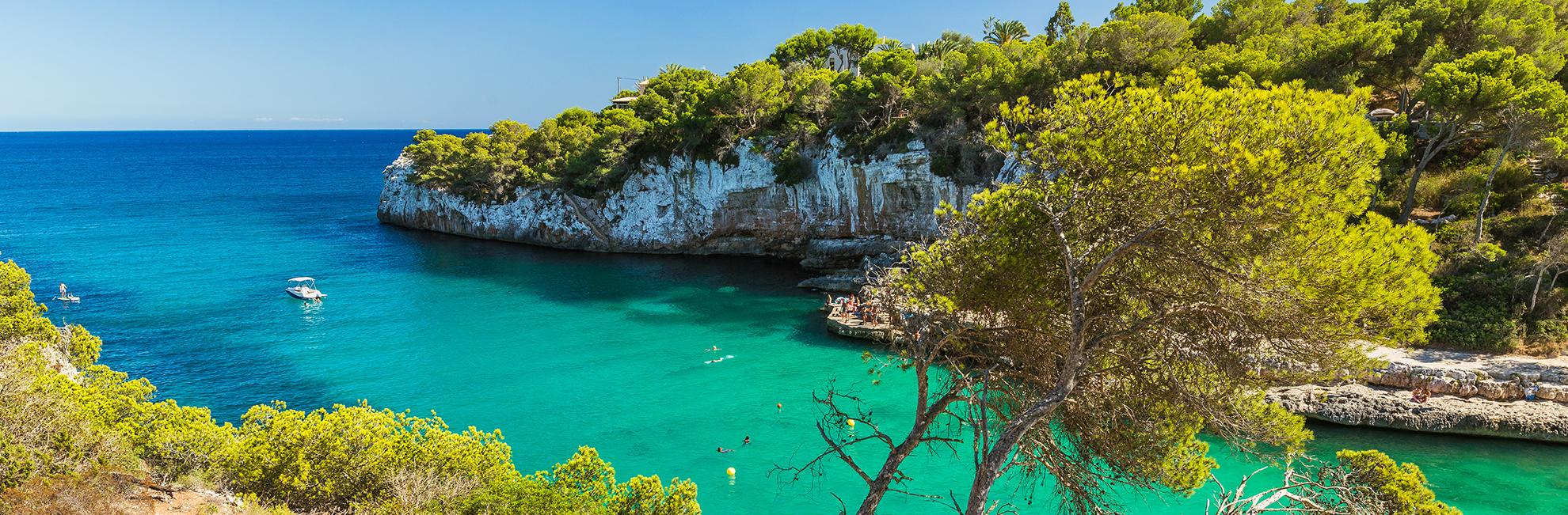 El Tojo Majorque